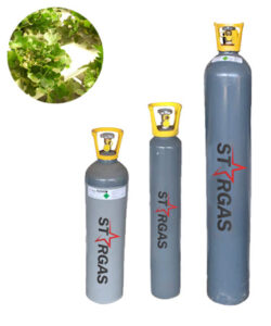 Stargas - CO2 Gas cylinder, perfect for hydroponics, plant and aquatic plant for sale in Finglas Fuels. Offical Stargas merchant in Dublin